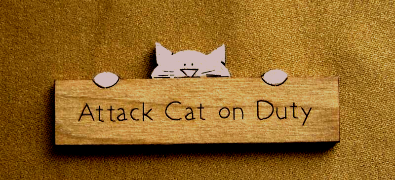dollhouse attack cat on duty sign