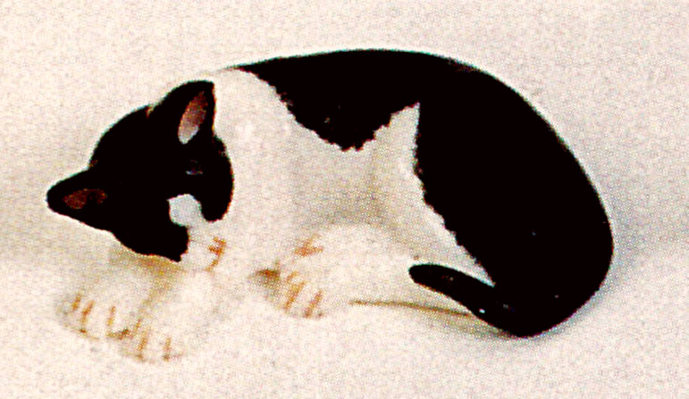 black and white sleeping dollhouse cat