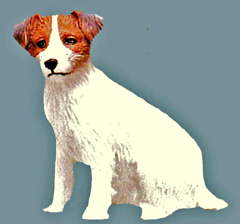 dollhouse jack russell terrier
